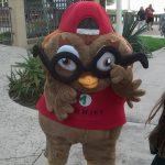 Magnify Owl Mascot
