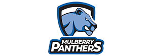 Mulberry Panthers Logo