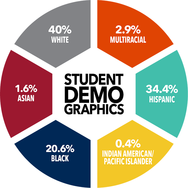 Percentile graphic showing student demographics